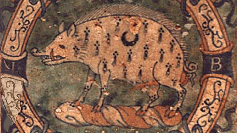 Bacon boar